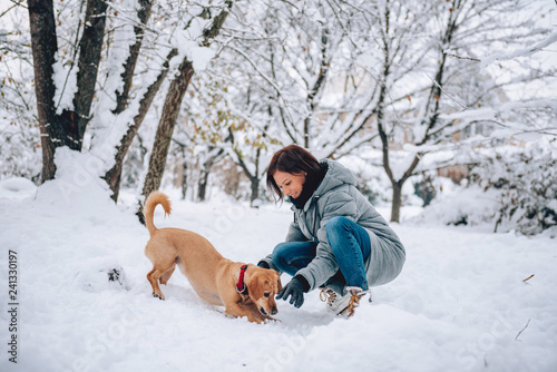 Woman with a dog on a snow - 241330197