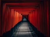 Fototapeta Do przedpokoju - Fushimi Inari Taisha - many torii in Kyoto, Japan © florianreichelt