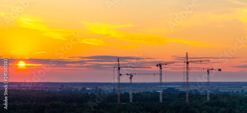 obraz lub plakat Several construction cranes on the background of colorful sunset sky