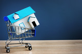 Shopping cart and small house. Buying real estate concept. Free space. - 241369957
