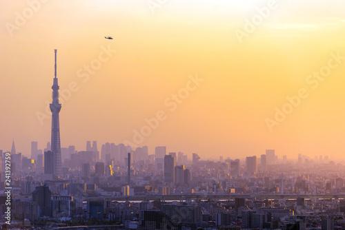 obraz PCV Tokyo city view with Tokyo sky tree