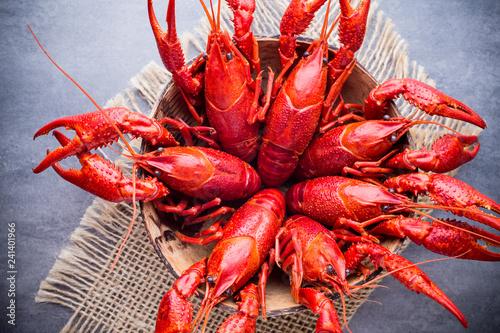 Crayfish. - 241401966