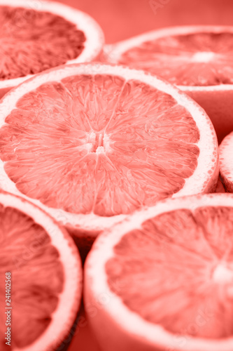 Mixed citrus fruit figs, limes on a living coral background. - 241402568