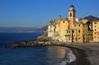 Quadro Camogli nella splendia costiera ligure con la palma sul castello di Mondragone e lo sfondo di Genova
