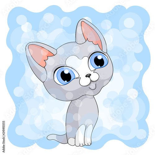gray cute kitty blue background