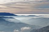 Brouillard dans les vallées des Vosges - 241429534