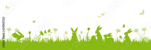 Easter holiday scene banner isolated vector illustration with bunnies on meadow - 241431723