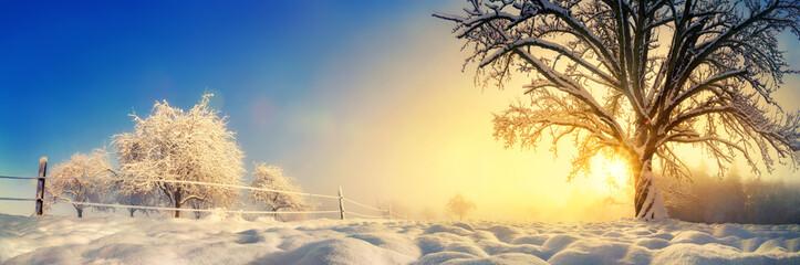 Panorama von stimmungsvoller Winterlandschaft © Smileus