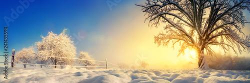 Leinwanddruck Bild Panorama von stimmungsvoller Winterlandschaft