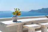 Oia - Terrace on the Aegean sea - Santorini Cyclades Island - Greece