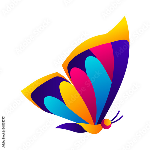 Colorful butterfly. Bright abstract insect. - 241455797