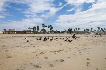 San Diego, California (USA)