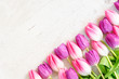 Leinwanddruck Bild - Pink fresh tulips