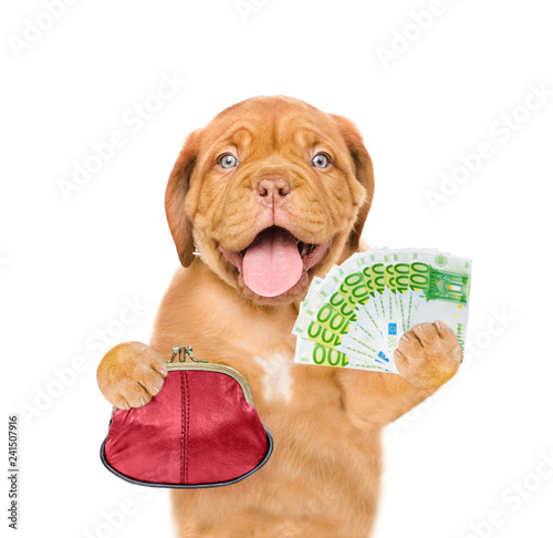 Happy puppy with retro wallet and euro. isolated on white background