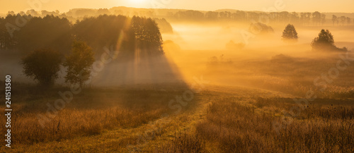beautiful, misty sunrise over autumnal meadows and fields,sun rays shining through the fog - 241513580
