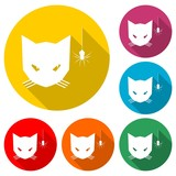 Cat looking at a spider icon or logo, color set  with long shadow