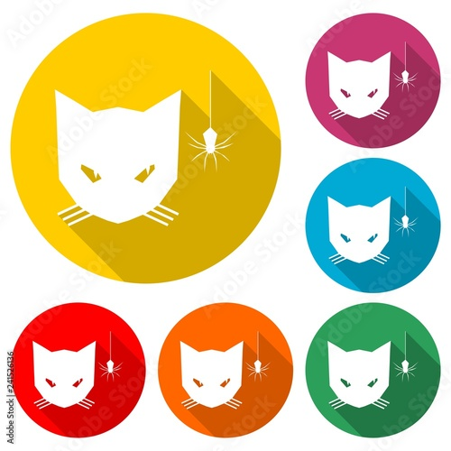 Cat looking at a spider icon or logo, color set  with long shadow - 241526136