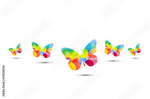 farfalla, fantasia, icona, simbolo, primavera, volare, libertà, - 241528536