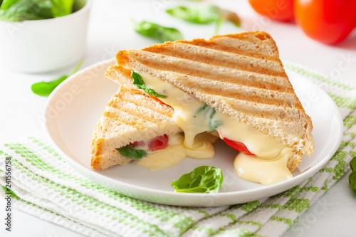 grilled cheese and tomato sandwich on white background - 241556758