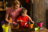 Hobby concept. Little child help woman planting flower in pot with soil, hobby. Indoor gardening as hobby. Enjoy family hobby activity - 241562366