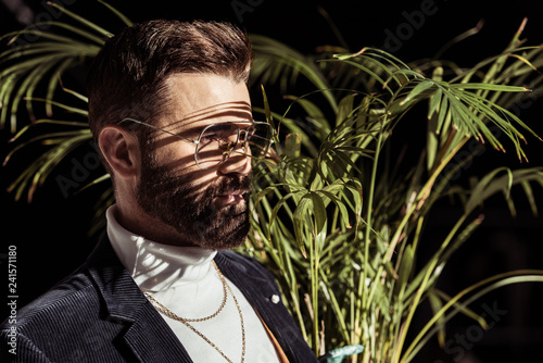 handsome bearded man in glasses with green houseplant isolated on black
