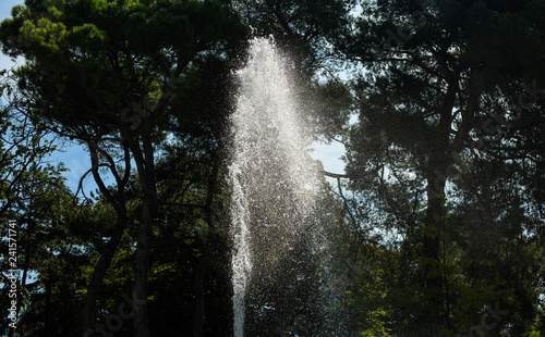 Fountain water with trees in the background