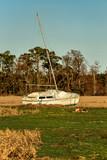 Boat on land - 241573362