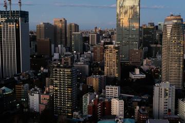 Tokio Aerial © romanb321