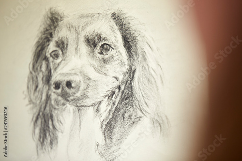 Close Up Of Artist Sitting At Easel Drawing Picture Of Dog In Charcoal