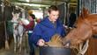 Leinwanddruck Bild - Man in working clothes feeding horse