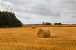 Leinwanddruck Bild - Hay stacks (sheafs) in a summer field