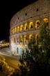 Quadro Rome Colosseum