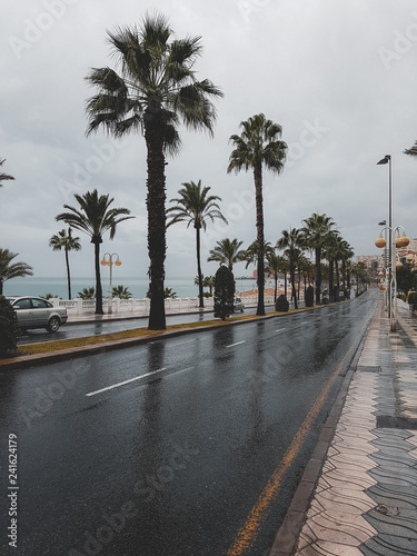 The boulevard of malaga during November