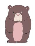 cute cartoon  bear  animal illustration
