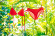 Leinwanddruck Bild - Red bikini swimsuit hanging air drying on clothing line outside on balcony. Summer vacation icon background - woman swimwear eco friendly laundry outdoor with green plants.