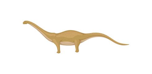 Flat vector design of mamenchisaurus or diplodocus, side view. Wild animal from Jurassic period. Prehistoric creature