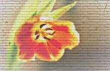 "Постер, картина, фотообои "" tulip on brick wall"""