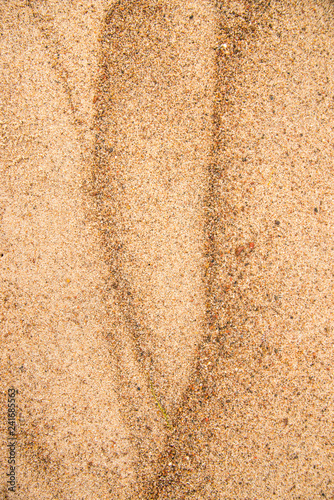 Sand of a beach with patterns - 241685563