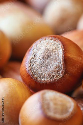 Leinwanddruck Bild Close up of fresh ripe organic hazelnuts (filbert). Copy space