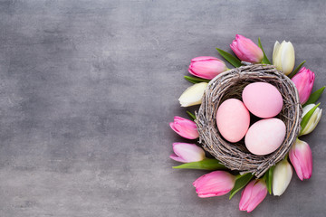 Pink tulip with pink eggs nest on a gray background. Easter greetings card. © gitusik