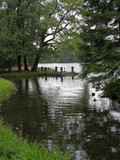 Fototapeta Fototapety na ścianę - View of lake through trees with steps to water on the embankment on cloudy days © Andrey