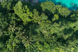 Top view landscape of Beautiful tropical rainforest in summer season image by Aerial view drone shot, high angle view