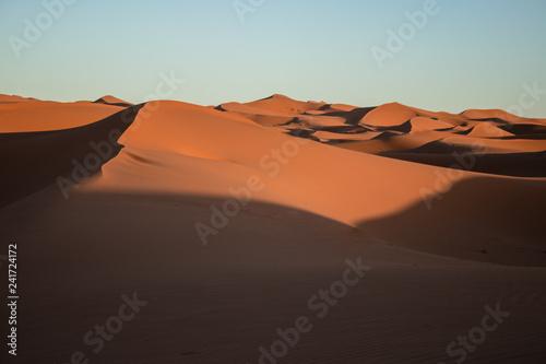 Ab in die Wüste I