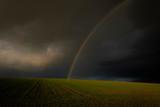 Regenbogen über einem  Feld im Winter, Kreis Hassberge, Unterfranken - 241724332