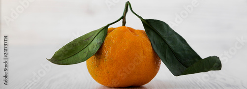 Fresh ripe unpeeled tangerine over white wooden background, side view. Closeup. - 241737114
