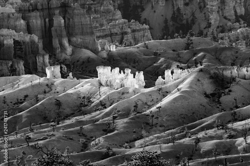 beautiful landscape in Bryce Canyon with magnificent Stone formation