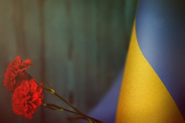 Ukraine flag for honour of veterans day or memorial day with two red carnation flowers. Glory to the Ukraine heroes of war concept on light blue blurred natural wood wall. background.