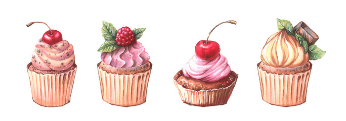 Watercolor cupcakes set with different type of cupcakes: strawberry, blueberry, chocolate. citrus, raspberry. Isolated © Yuliya