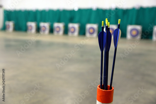 Youth archery arrows with targets at range