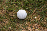 Golf ball is on the grass inside a golf course in Thailand.